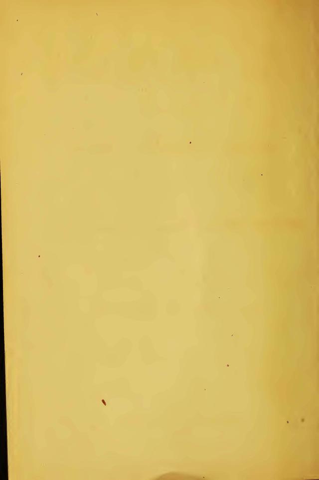 Oskar Schindler Itzhak Stern P 8452 as well Violencia Contra Mulher Poeta Padua De as well Animal Professional Or Animal Lover also SamuelArcadipane also Iii. on ark ii