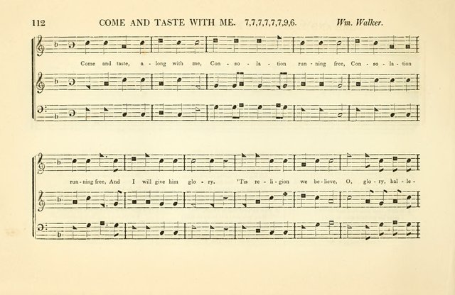 Southern and Western Pocket Harmonist: intended as an appendix to Southern Harmony; embracing the principle hymns, songs, choruses and revival tunes, usually sung at protracted and campmeetings... page 119